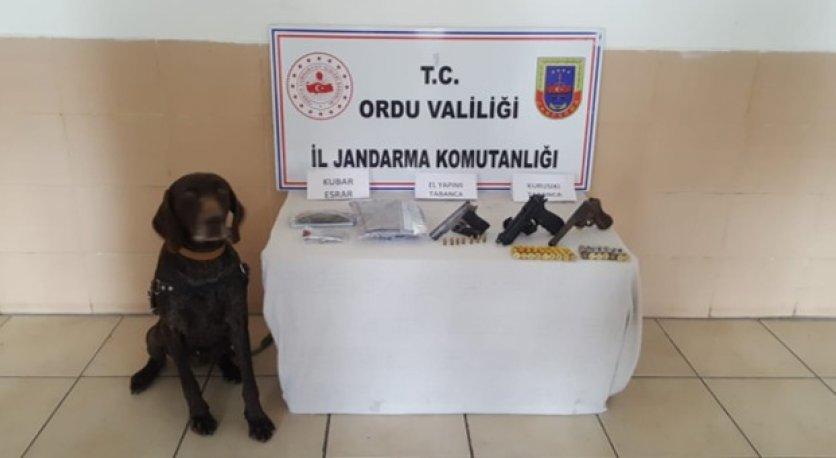 JANDARMA ASAYİŞ HABERLERİ